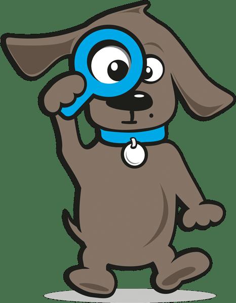 Hundekrankenversicherung kosten | Tinki